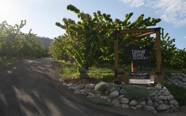 Elephant Island Winery entrance